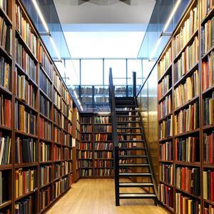 Библиотеки Вырицы