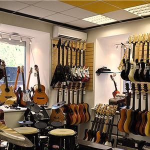 Музыкальные магазины Вырицы