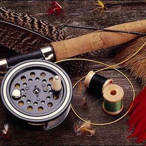 Охотничьи и рыболовные магазины Вырицы