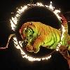 Цирки в Вырице